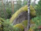 http://velobratsk.ru/forum/img/_fr/13/s3403455.jpg